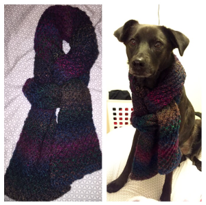 Star Stitch Scarf with cute dog model